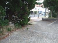 公完成した樋井川河畔緑道・公園のスロープ その2 - 車いすで街へ 踏み出そう車輪の一歩