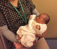 産後3日目 - 乳姉と子牛の日記