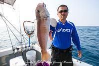 2017,06/18.19 鯛ラバ - 鯛ラバ遊漁船  Miyazaki Offshore Boat Game Marine Frog