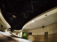 6月19日 今日の写真  - ainosatoブログ02