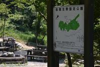 大阪府民の森 くろんど園地~くろんど池 - 花・tuzuri