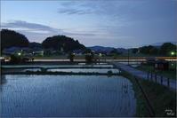 明日香村橘 妖しき茄子色の夜 - ぶらり記録(写真) 奈良・大阪・・・