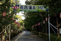 東公園の花菖蒲祭り1のデジブックを公開しました。 - 写真撮り隊の今日の一枚2