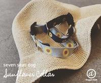 Sunflower Collar - Doggie Do!! / good dog and hello cat !!