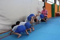 楽しみながら(すずらん) - 慶応幼稚園ブログ【未来の子どもたちへ ~Dream Can Do!Reality Can Do!!~】