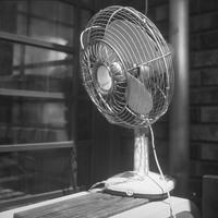 慣れないアウトドアライフに戸惑う昭和の扇風機 - Film&Gasoline
