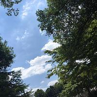 井の頭公園 - 花快銘奈々
