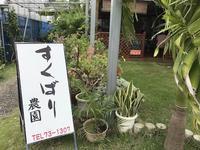 宮古島・すくばりテラス - おいしい便り