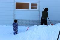 161211 美瑛 - スノーボードとイヌ