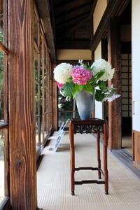 川喜多映画記念館、庭と別邸特別公開 - カマクラ ときどき イタリア