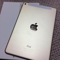 iPad - ねこまるのときどき日記
