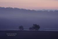 朝霧ベール - ekkoの --- four seasons --- 北海道