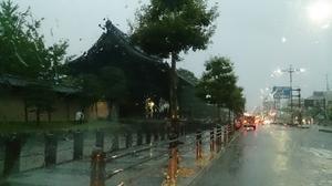 強風、強雨~!! - なかがわ養蜂場「滋賀の純粋はちみつ」ブログ