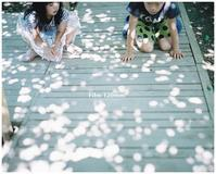 薔薇フィルム*入荷~♪♬ - ココロハレ*