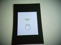 リフォームオーダー 緑のリング [2] - STUDIO  MARIPOSA  あをむし日記