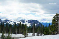 Mt. Rainier National Park, WA  マウントレーニア国立公園 - teddy blue