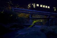 福塩線の最終電車とゲンジボタル - 写真ブログ「四季の詩」