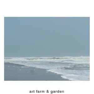 6月の朝、海で出会う植物達/art farm & garden - アート農場と庭