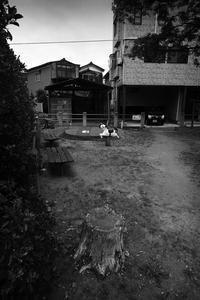 下町歩き 2017 #04 - Yoshi-A の写真の楽しみ