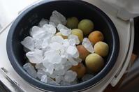 炊飯器で梅シロップ - YUKKESCRAP