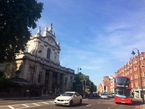 真夏とともに地元マーケットからやってきた紫蘇の葉♪ - ロンドン 2人暮らし