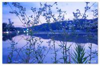 夕空終わりの水鏡。 - Yuruyuru Photograph