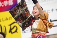 2017加古川踊っこまつり2日目その36(おどり屋 笑颱その4) - ヒロパンの天空ウォーカー