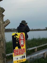 ニムオロ原野の旅(北海道)春国岱#1 - cuccooの野鳥エトセトラ