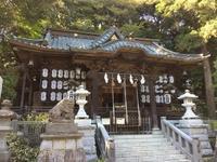 大甕倭文神社 - 暁玲華のスピリチュアルパワー