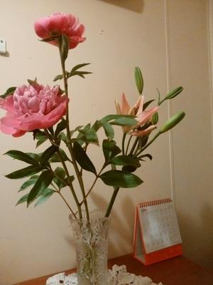 6/21のお弁当と満開の花 - 空色の便箋