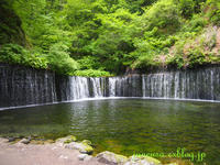 またまた温泉旅行-草津温泉 & 箱根温泉 - アメリカ南部の風にふかれて