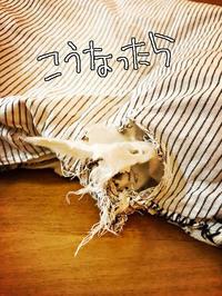 桐のおもちゃ - 山田南平Blog