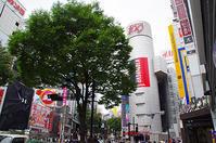 6月22日(木)今日の渋谷109前交差点 - でじたる渋谷NEWS