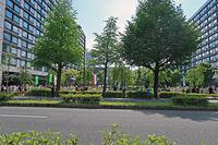 共謀罪反対 国会前集会 - ムキンポの exblog.jp