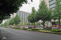 共謀罪反対 写真展ハシゴ - ムキンポの exblog.jp
