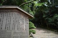 まるで森林浴(=。=) 法然院 鹿ヶ谷 京都 - field to support your life 京都一景