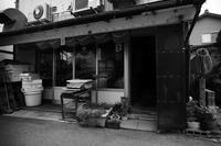 下町歩き 2017 #06 - Yoshi-A の写真の楽しみ