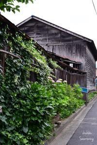 Chichibu-June 3 - Sauntering