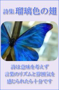 詩集 瑠璃色の翅 ① - ― Metamorphose ―