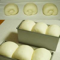 レッスンレポ~山食パン~ - choco cafe* パン教室