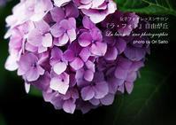 日曜日は紫陽花とプロモデルと浴衣を撮りますったら撮りますよ。sonyユーザさんはZEISS Batis 1.8/85の貸出し可ですよ。 - 東京女子フォトレッスンサロン『ラ・フォト自由が丘』とさいとうおり
