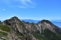 八ヶ岳、稜線上を彩る高山植物と広大な景色 - 風とこだま