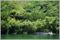 四国巡り -28 - Camellia-shige Gallery 2