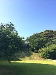 鎌倉心景「森へ」 - 海の古書店