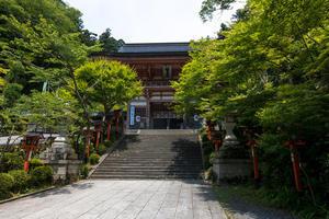 鞍馬寺「竹伐り会式」 - 京都写真(Kyoto Photo)