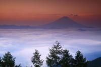 29年6月の富士(20)甘利山雲海の富士 - 富士への散歩道 ~撮影記~