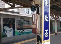 6月23日 今日の写真 - ainosatoブログ02