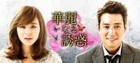 韓国ドラマ 華麗なる誘惑 - マイニチが宝箱