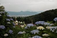 足柄・丹沢方面ツー - ボクノタカラモノ。