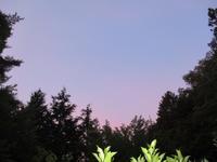 夏は来ぬ       6月24日 - 雲居